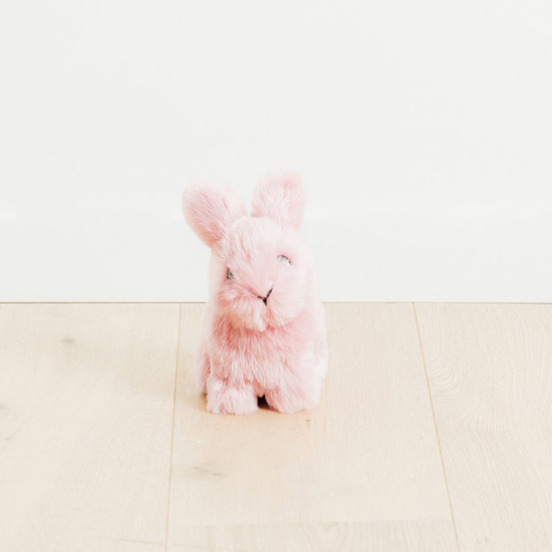 Odyssea Boutique - La Pelucherie - Lapin-02
