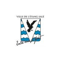 Logo-Partenaires - Odyssea - La-Reunion-Ville-Etang-Sale - 100